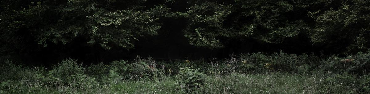 Silent, Dark and Deep 2