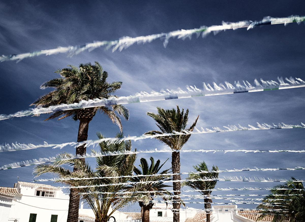 Palms, 2004
