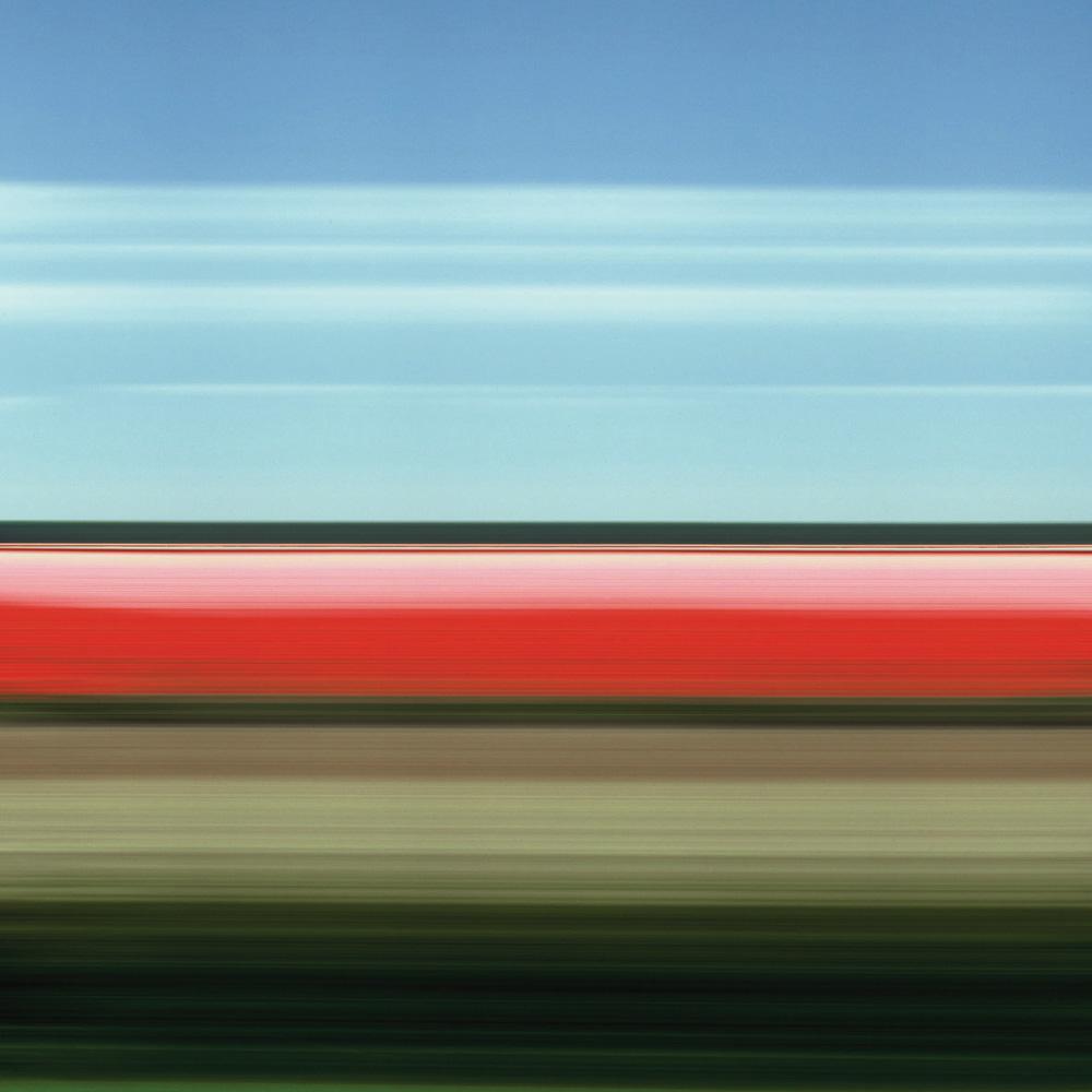 Tulip Fields II, 2004
