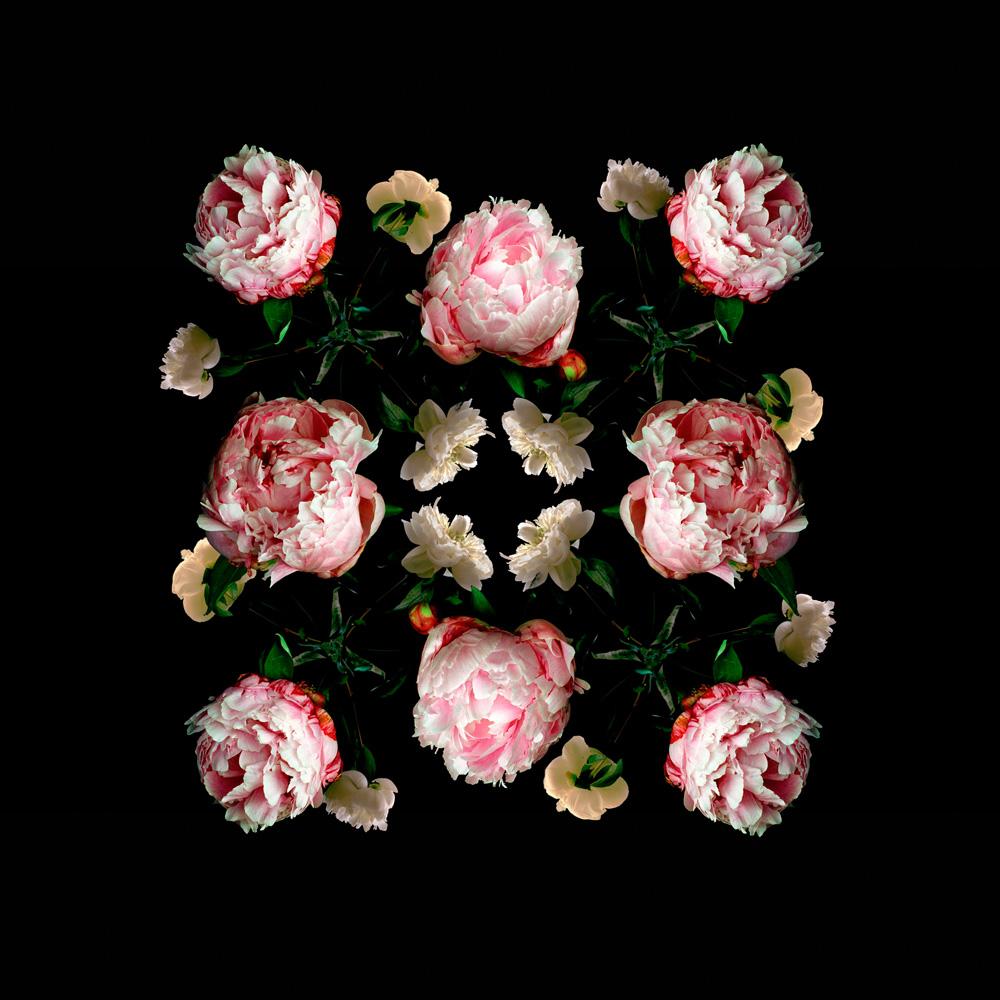 Floriculture C10