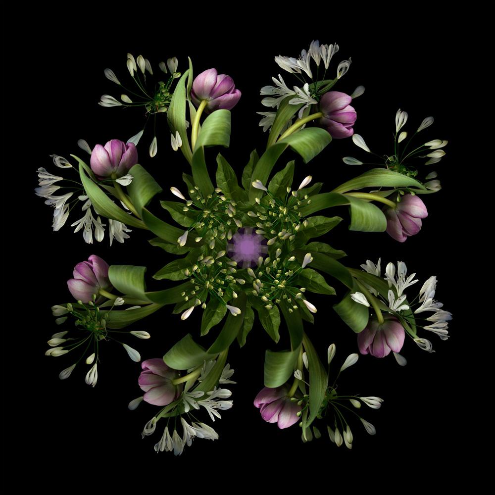 Floriculture E8.1