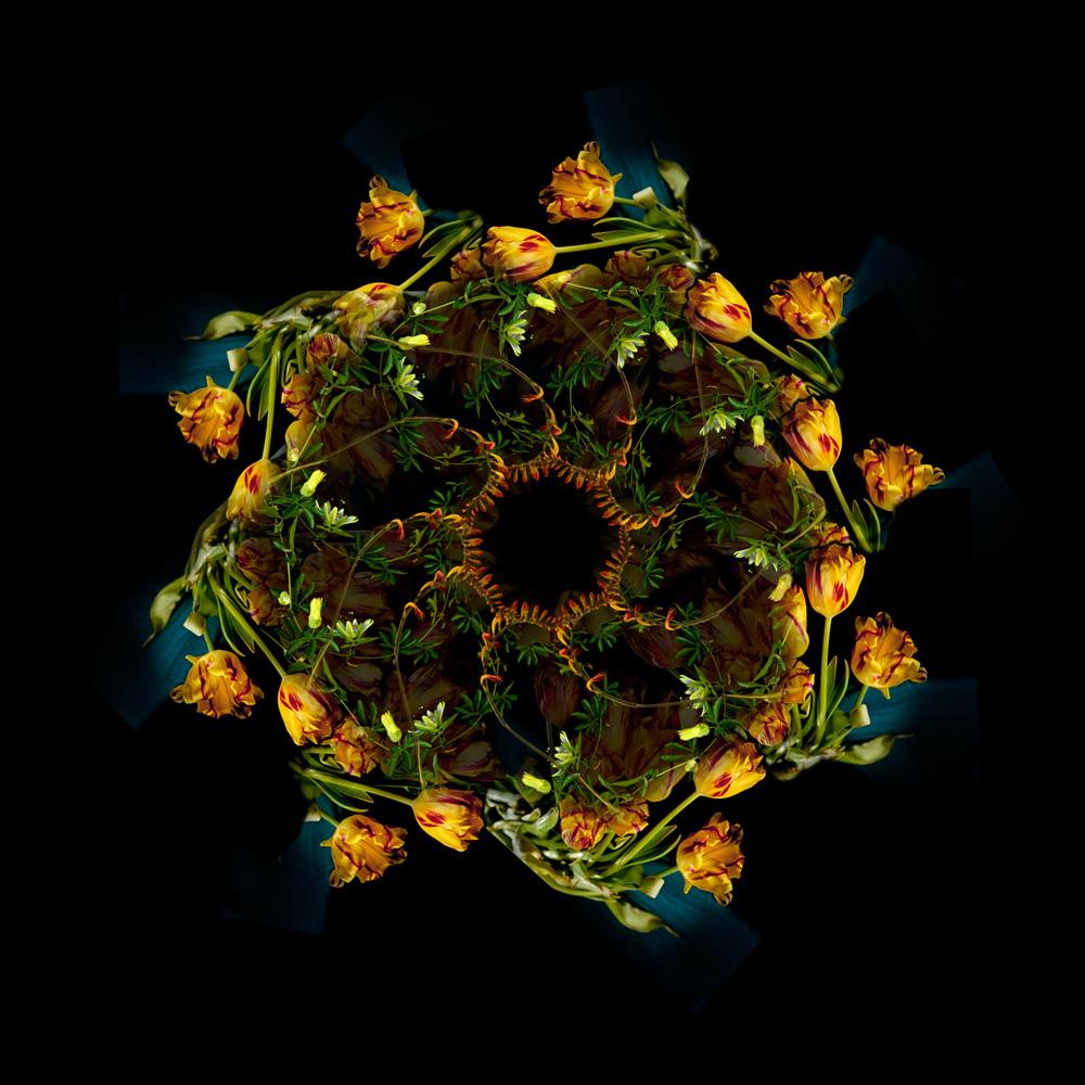 Floriculture F13