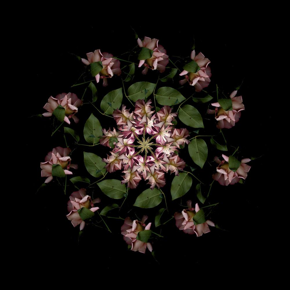 Floriculture F17.2
