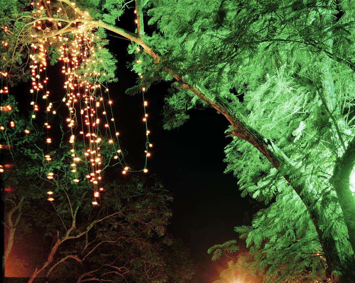 Untitled (Kanakakkunnu 1, Trivandrum, India), 2010