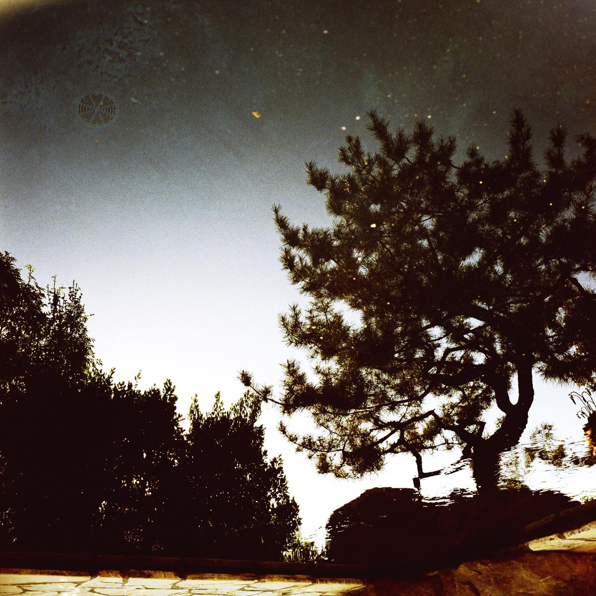 Poolscape #16, 2010