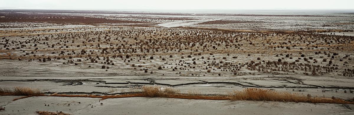 Gyehwa, Desert, 2007
