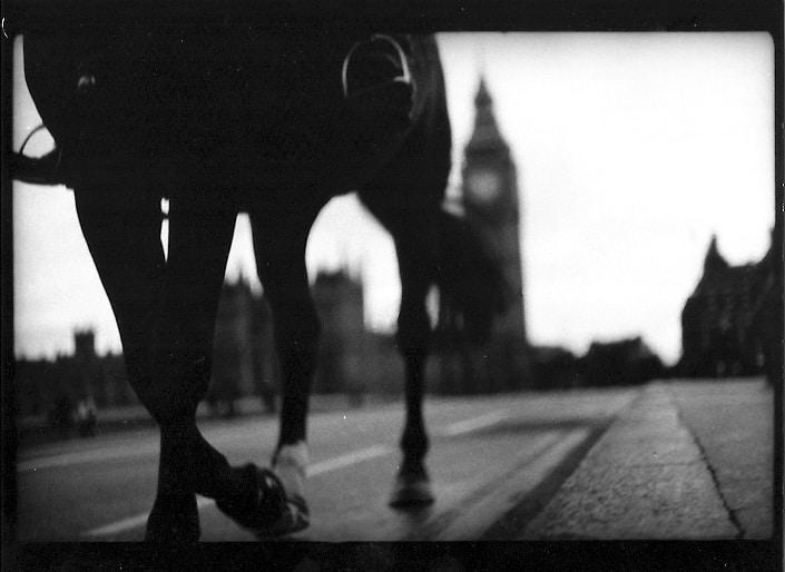 Horse and Big Ben, 2012 by Giacomo Brunelli_Crane Kalman Brighton