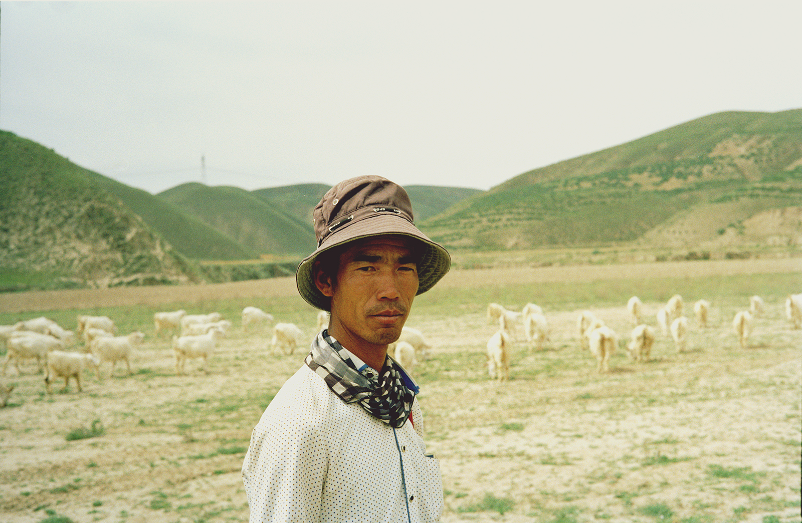 Qingyu Yang - Chinese Muslim